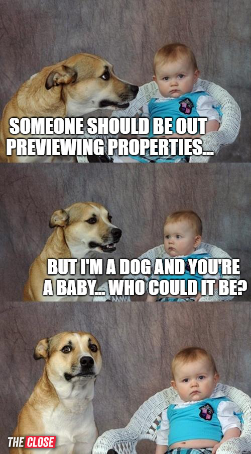 Previewing Properties-77 Brand New Real Estate Memes for 2018