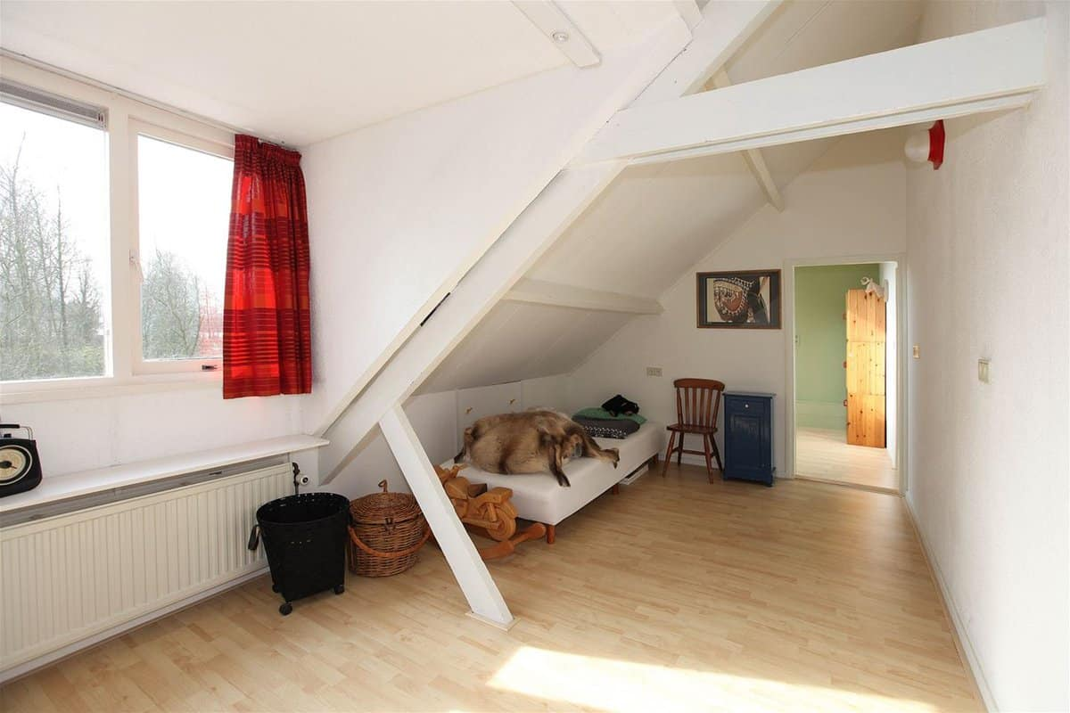 bad real estate photos: Bedroom with animal