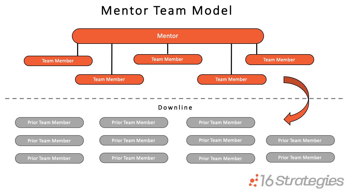 Mentor Team Model