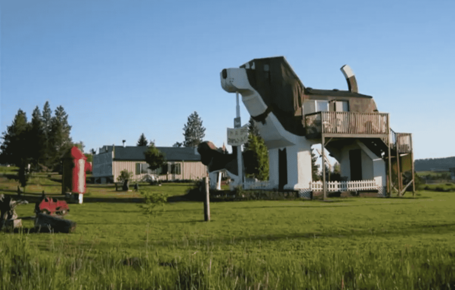 Cottonwood Dog house